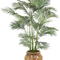 7' Areca Palm In Extra Large Ceramic Egg Pot Mocha