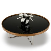 Classy Brown Black Coffee Table