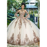 Sweet 16 Pink Princess Quinceanera Dresses  Long Sleeves Tulle Formal Pageant Ball Gown for Girls Vestidos De  Anos robe ivoire