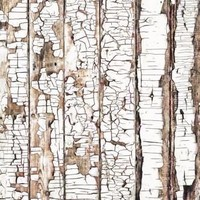 White Distressed Wood Candy Floor Backdrop 4x5 - LCCF821 - Last Call