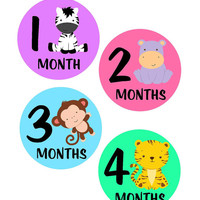 Baby Month Stickers, Monthly Onesuit Stickers, Monthly Baby Sticker, Baby Shower Gifts, Baby Month Sticker Girl, Jungle Animals, G01