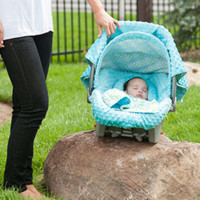 Hayden Carseat Canopy Whole Caboodle