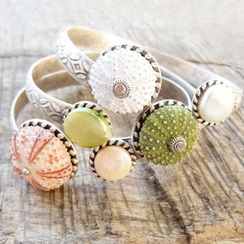 Sea Urchin Collection Elegant Sea Urchin and by StaroftheEast