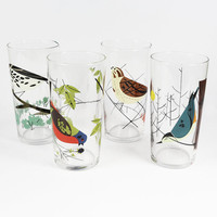 Charley Harper Bird Glasses Set of 4 by Todd Oldham