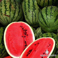 Allsweet Watermelon Heirloom Seeds - Non-GMO, Open Pollinated, Untreated