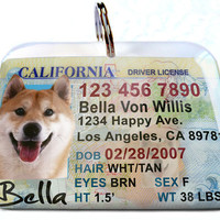 California driver license New Personalized Custom ID Tags for dogs and cats Double Sided pet tags
