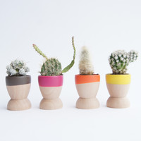 Mini Planters, Set of 4, Fall Festival