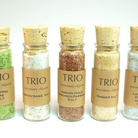 Flavored Salt Set- 5 Gourmet Salts in Mini Glass Bottle with Cork