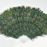 Double sizes Peacock Eyes Feathers Decorative by lawrencelv