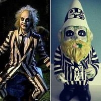 The beetle juice gnome