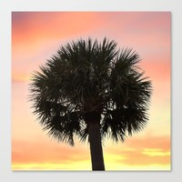 Palm and Sunset Canvas Print by Legends Of Darkness Photography