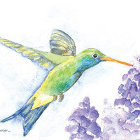 Hummingbird Watercolor Painting - 5 x 7 - Bird Painting - Spring - Giclee Print