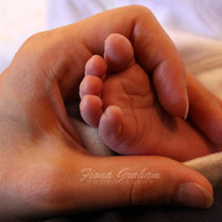 Mothers Day Photograph - Baby feet - Nursery decor - 8x10 print - FREE SHIPPING