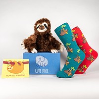 Sloth Care Package