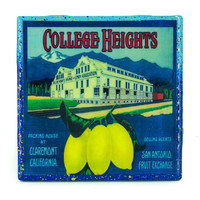 College Heights Lemons (2) Brand - Vintage Citrus Crate Label - Handmade Recycled Tile Coaster