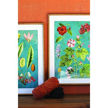 Set Of 2 Framed Flower Prints With Blue Background Under Glass