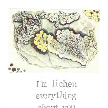 I'm Lichen Everything About You Card | Funny Valentine Vintage Nature Pun Plants Outdoors Nerdy Humor Science Biology Men Women