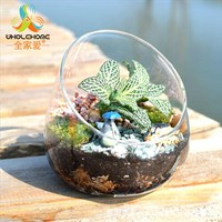 DIY Hydroponic Plant Flower Container Hanging Glass Vase Planting Sphere Style Home Garden Terrarium Wedding Party Decor