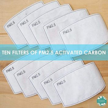 PM 2.5 FILTER ~ ACTIVATED CARBON