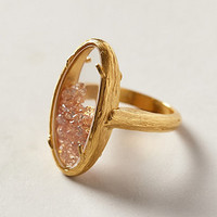 Champagne Rattle Ring