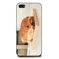 Pug Loaf of Bread Cute Funny iPhone 5 | 5s Case