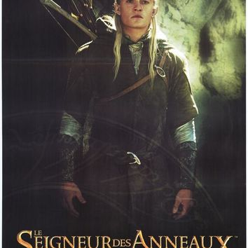 Lord of the Rings 1: The Fellowship of the Ring (French) 11x17 Movie Poster (2001)