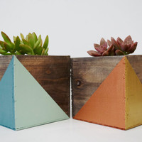 Geometric Painted Wood Planter with Succulent Kit (MORE COLORS INSIDE); Natural Wood; Small Planter; Office Planter; Desk Accessory; Dorm