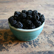 Mountain Blackberries - Photography Print
