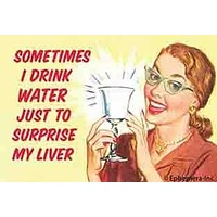Sometimes I Drink Water Just To Surprise My Liver Magnet