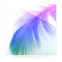 "Alison Coxon ""Feather Colour"" Luxe Square Panel"