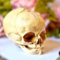 Realistic Fetal Skull  - real size resin fetus skull aged bone color - Goth Oddity home decor or craft supply. -
