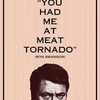 Ron Swanson- 8x10- parks and recreation, meat tornado, funny, humor, geek, retro