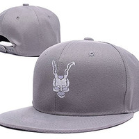 BARONL Donnie Darko Logo Adjustable Snapback Embroidery Hats Caps - Grey