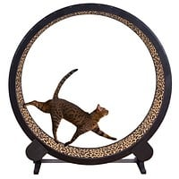 Cat & Kitten Exercise wheel