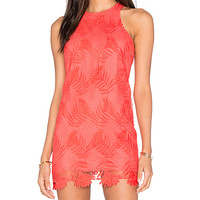 Caspian Shift Dress in Coral Reef