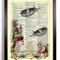 Blowfish Paradise Repurposed Book Upcycled Dictionary Art Vintage Book Print Recycled Vintage Dictionary Page Buy 2 Get 1 FREE