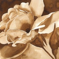 Walnut Rose (painted in walnut ink) | BarbaraFord - Painting on ArtFire