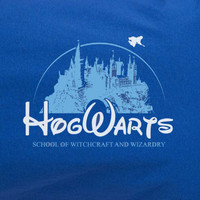 Harry Potter Hogwarts Disney Castle School of witchcraft and wizardy Tee T-shirt