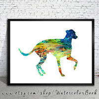 Greyhound 3 Watercolor Print, Greyhound Illustration,watercolor painting,animal watercolor, Greyhound art, dog art, dog print, art print,