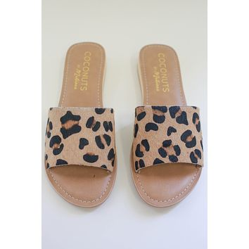 Tymber Sandals - Leopard