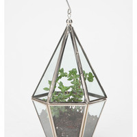 Urban Outfitters Exclusives Faceted Hanging Terrarium from Urban Outfitters   BHG.com Shop