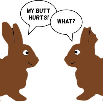My Butt Hurts Bunny 84