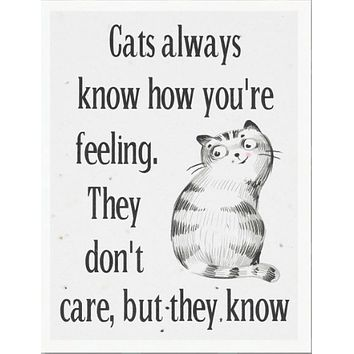 Cats Always Know How You're Feeling (greeting card)