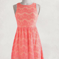 Crazy for Coral Dress
