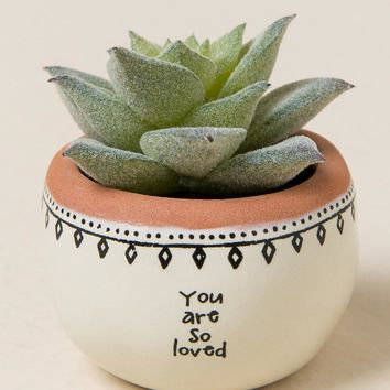 You Are So Loved Mini Succulent