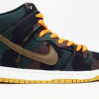 Nike Dunk High SB FIVEONEO 510