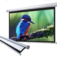 """100"""" 16:9 Home Movie Manual Projection Screen Pull Down Projector Matte 169"""