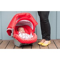 Tyler Carseat Canopy Whole Caboodle