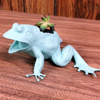 Up-cycled Frog Planter
