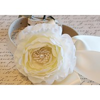 Ivory Peonies Floral Dog Collar, Pet Wedding, Ivory Wedding